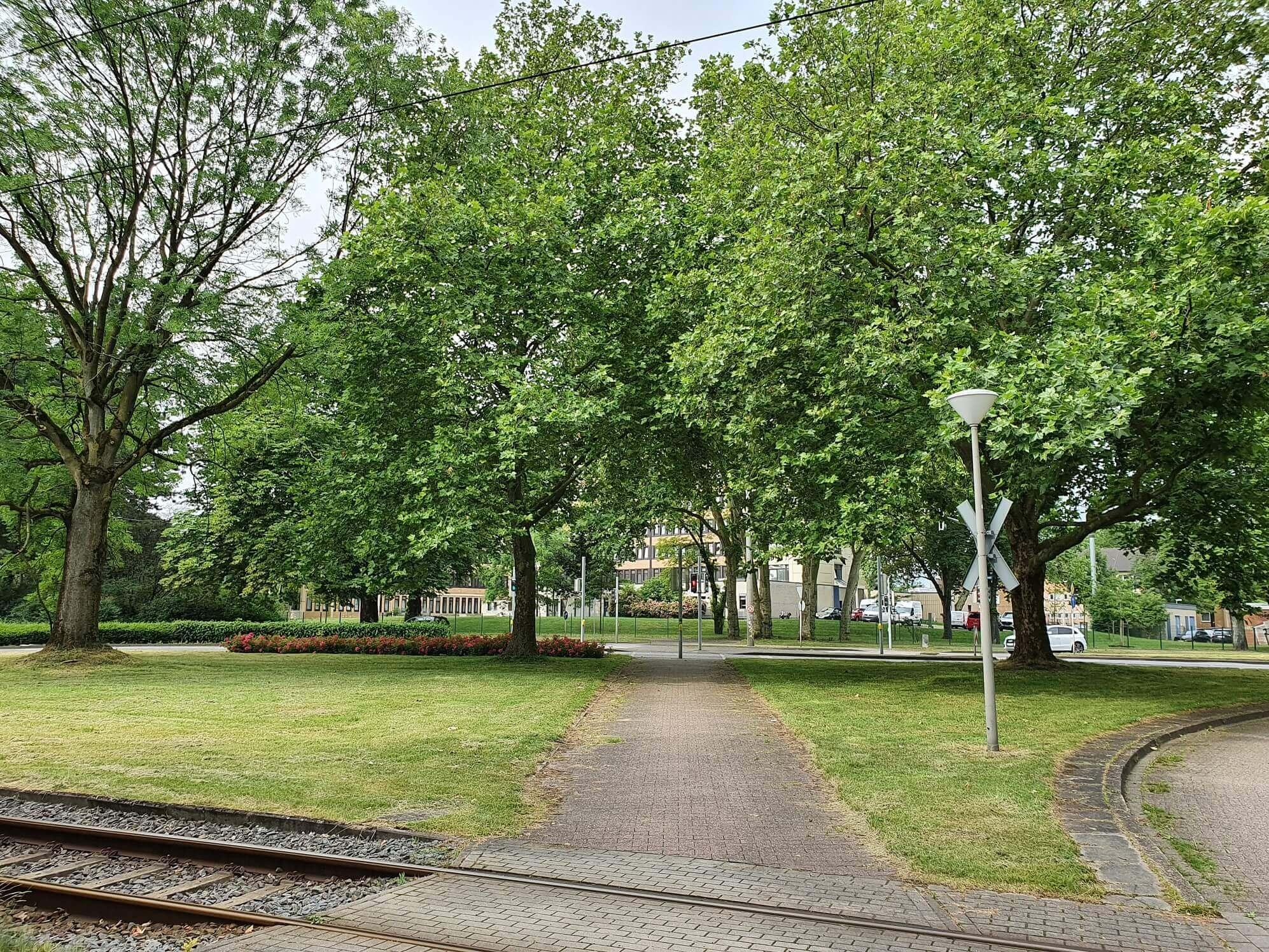 Ein Bahnübergang in mitten einer Grünfläche im Innenstadtbereich.